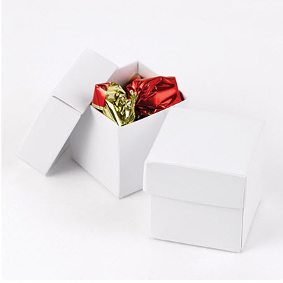 white favor boxes