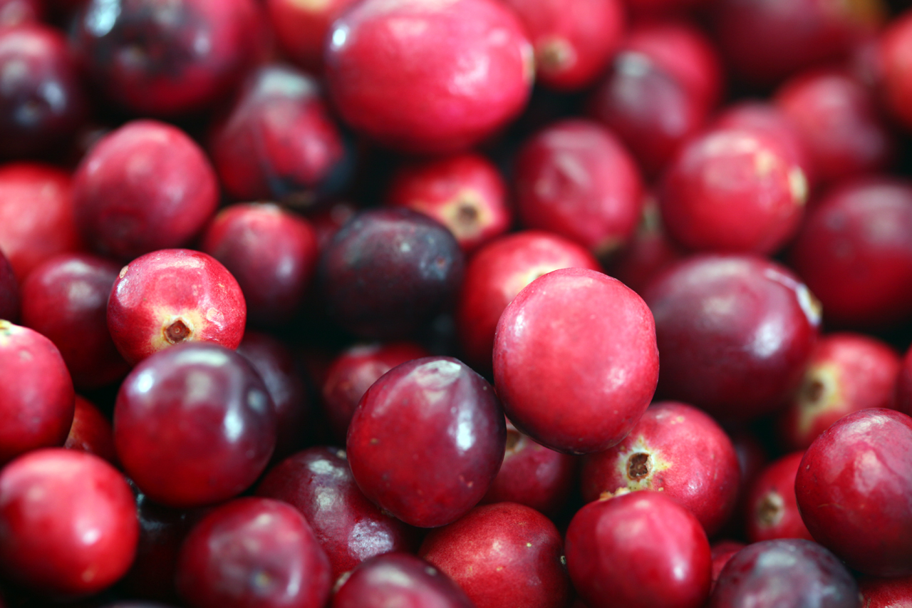 cranberries for fruit centerpiece
