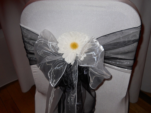 daisy chair cover with bow