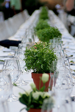 Wedding Table Centerpieces Ideas To Save You Money