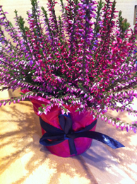 purple heather wedding centerpiece
