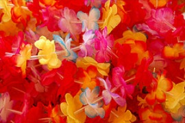Hawaiian Leis Decorations