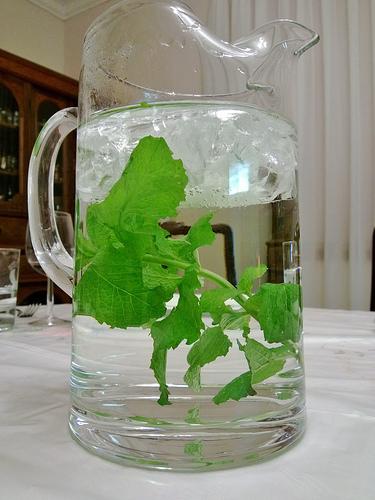 minty water wedding drinks
