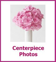 centerpiece photos