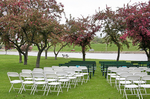 wedding in a park