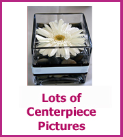 centerpiece pictures