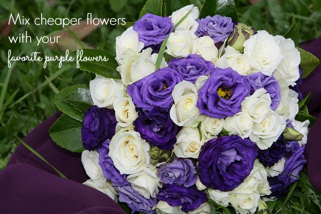 cheap purple flowers