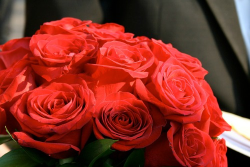 red rose Christmas bouquet
