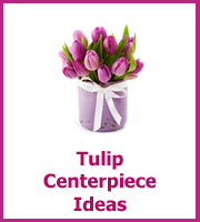 cheap tulip centerpiece ideas