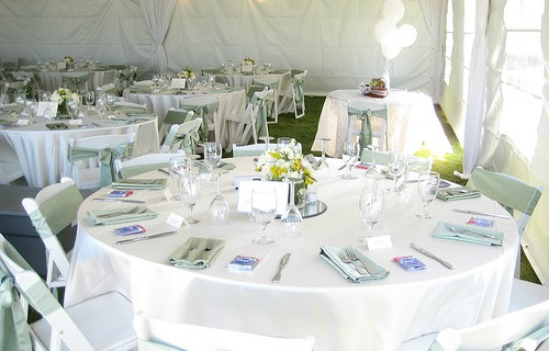 white chairs with sashes