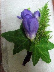 Purple Freesia Wedding Flower by pursehappygal